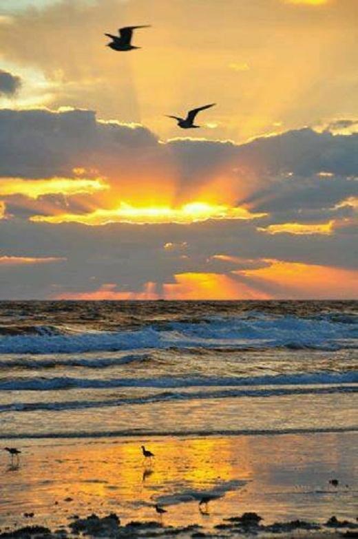 Không khí thanh bình bao trùm khắp vùng biển mênh mông.