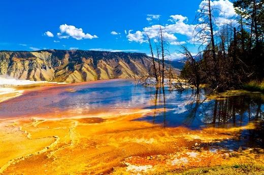 Yellowstone có hệ sinh thái hết sức đa dạng và luôn nằm trong danh sách những khu vực cần được bảo tồn nhất hành tinh.