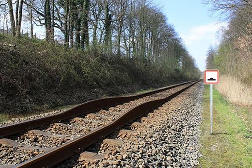 Đường ray xe lửa phiên bản... thú nhún.