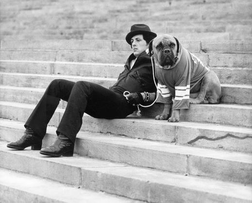 Sylvester Stallone đã từng nghèo đến mức phải bán cả chú chó cưng.