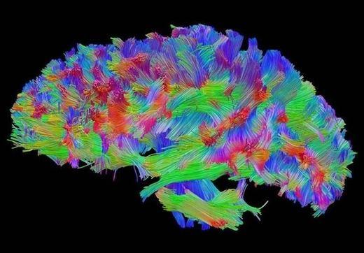 Có tới 11 triệu thông tin riêng rẽ được não của chúng ta thu nạp mỗi giây. Tuy nhiên, chỉ có 40 thông tin trong số đó được nhận biết và xử lí.
