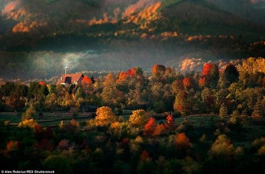 Vào mùa thu, cây cối đồng loạt thay áo, biến nơi đây thành một bữa đại tiệc màu sắc đỏ, cam, vàng. Nhờ vậy mà Transylvania trở thành một trong những nơi ngắm cảnh sắc mùa thu đẹp nhất ở châu Âu.