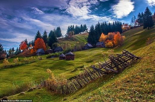 Những ngôi nhà mái tranh cổ kính với hàng rào ngả nghiêng trong sắc thu dịu dàng.