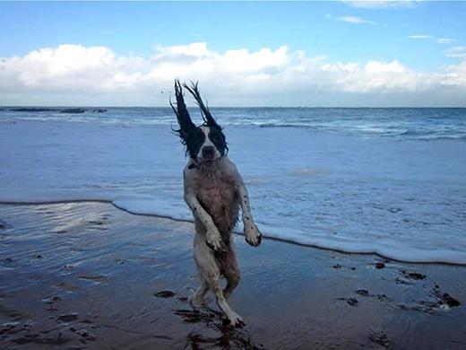 Đã ra biển là phải tự tin tạo dáng thế này.