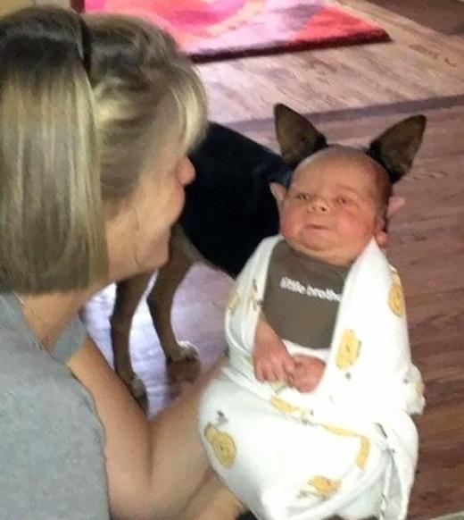 Một màn phối hợp cực ăn ý giữa em bé và cún cưng.
