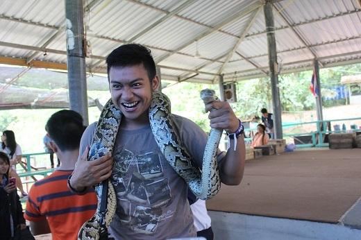 Du khách có thể thử chơi đùa với những chú rắn khổng lồ hiền như đất.