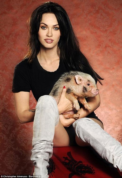 Cũng như George, ngôi sao quyến rũ Megan Fox đã từng nhận nuôi một chú lợn và đặt tên là Piggy Smalls.