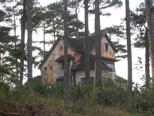 Căn nhà hoang thấp thoáng sau rừng thông.