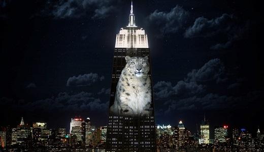 Báo tuyết là một loài thuộc họ mèo lớn sống trong các dãy núi ở Trung Á.