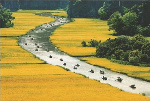Cảnh sắc hai bên sông thay đổi màu sắc theo mùa, từ vàng óng...
