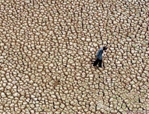 Nóng thiêu đốt ở Ấn Độ khiến cuộc sống khó khăn. Trong đợt nắng kỉ lục tháng 5 vừa qua, đã có hơn 1.700 người chết ở đất nước này.