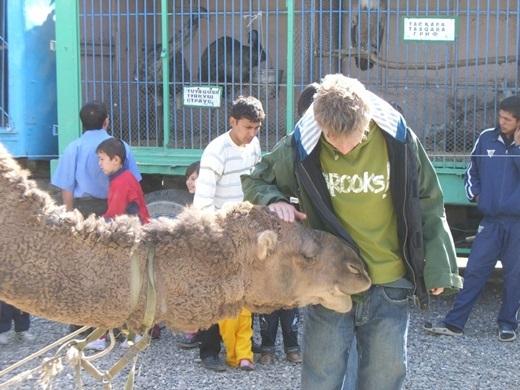 Anh chàng kết bạn với những động vật hoang dã ở Uzbekistan.