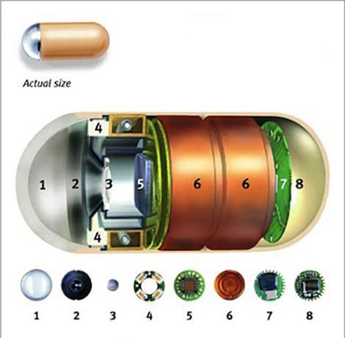 Tiến sĩ Braden đã sử dụng máy quay phim có kích thước bằng viên thuốc để quay lại những gì xảy ra trong dạ dày chúng ta sau khi ăn mì.