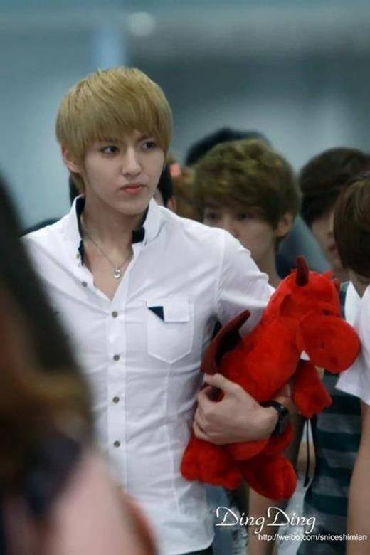 Việc Kris xuất hiện tại sân bay với thú nhồi bông trong tay là một hình ảnh hết sức bình thường. Sưu tầm thú bông là một trong những sở thích thú vị của cựu thành viên EXO.