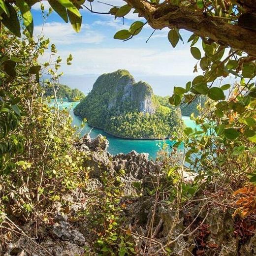 Bức tranh thiên nhiên ở Raja Ampat còn được chấm phá bằng những đầm phá xanh biếc, rừng ngập mặn và rừng nguyên sinh.