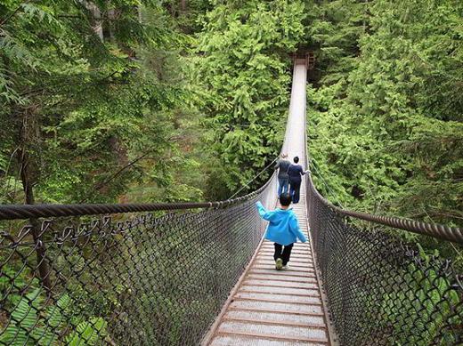 Một cây cầu treo thót tim trong công viên.