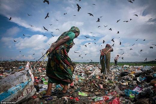 Vì miếng cơm manh áo mà họ phải kiếm từng đồng từng cắc từ những bãi rác bốc mùi.