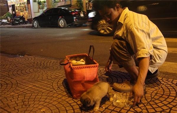 Đối với nhiều người trên đường Thái Văn Lung (quận 1), hình ảnh anhÂnxách giỏ đi đánh giày có chú chó bên trong đã trở nên quá quen thuộc.