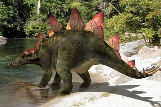 Tuy có kích thước khổng lồ nhưng não của khủng long chỉ bằng một quả bóng bàn.