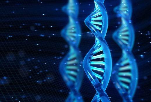 1 gam ADN lưu trữ lượng thông tin tương đương 1 tỉ đĩa CD.