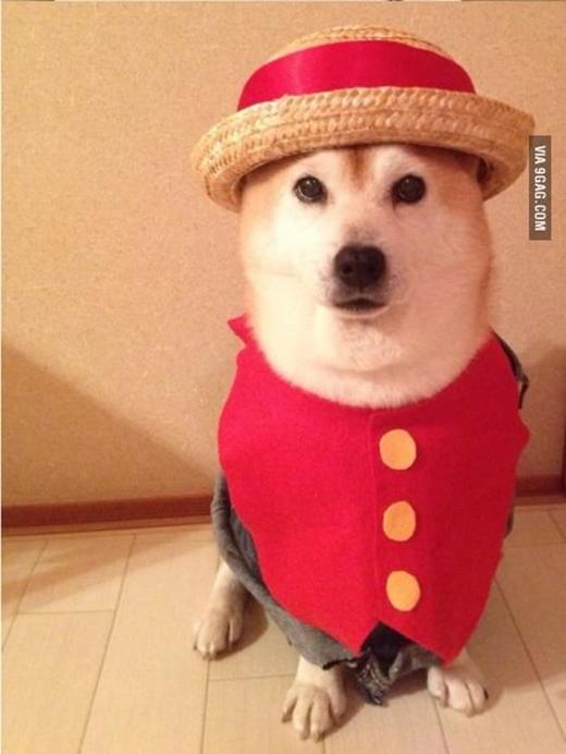 """""""Vua hải tặc"""" Luffy mũ rơm tinh nghịch."""