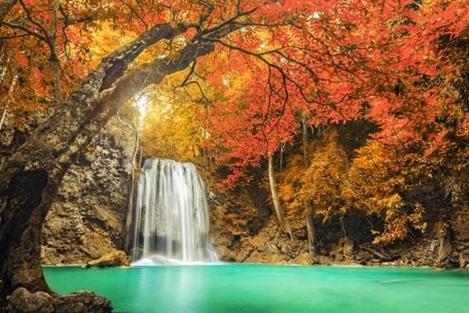 Nín thở với khung cảnh mùa thu đẹp lộng lẫy của châu Á