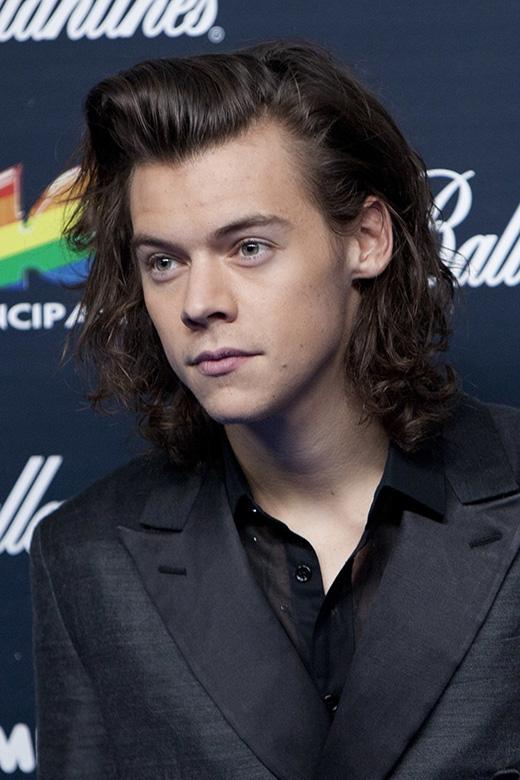 Harry Styles nổi tiếng là tay sát gái kể từ sau khi chia tay với Taylor Swift. Tuy nhiên không ít lần Harry lại vướng vào nghi án giới tính khi vào tháng 7/2013, tin đồn anh có quan hệ trên mức tình bạn với DJ Nick Grimshaw đã lan rộng trên khắp các diễn đàn. Thậm chí, anh chàng từng bị cho là có tình cảm đặc biệt với Zayn Malik, thành viên cùng nhóm One Direction với Harry.