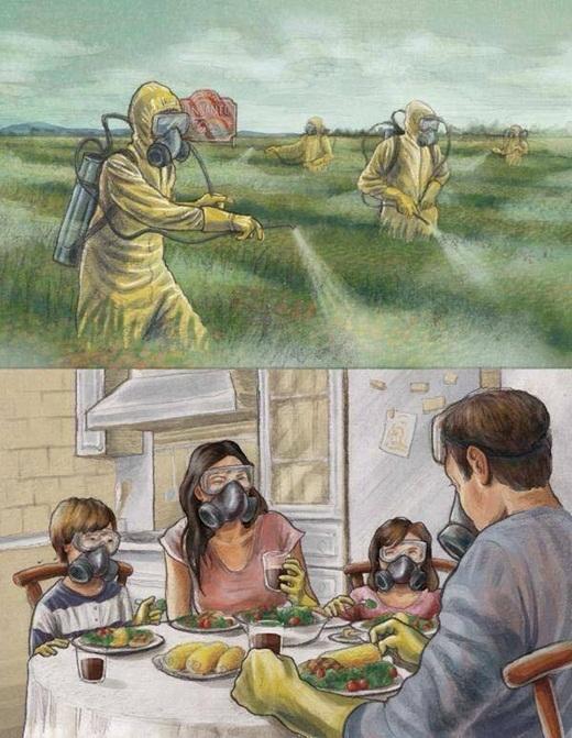 Những sản phẩm nông nghiệp cũng không còn an toàn đối với người dân. Thuốc trừ sâu, thuốc tăng trọng... đều là nỗi lo lắng khôn nguôi của mỗi gia đình.