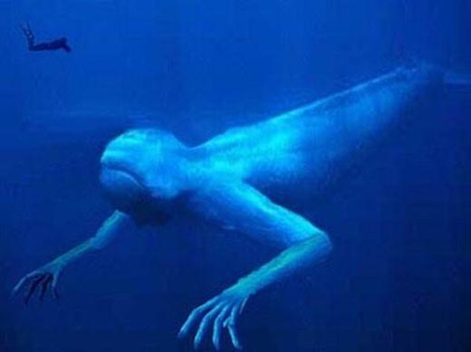 Còn đây là hình mô phỏng con quái vật.