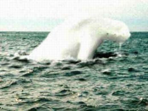 """Rùng rợn """"yêu quái hình người"""" vừa được phát hiện dưới đáy đại dương"""