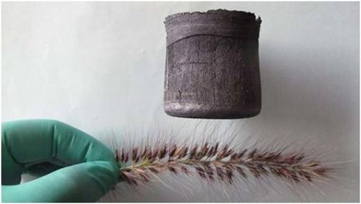ChấtGraphene Aerogelnhẹ hơn không khí đến 7 lần, được phát minh bởi người Trung Quốc.