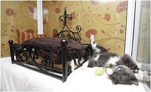 Giường ngủ với thiết kế không thể nào tinh xảo hơn!