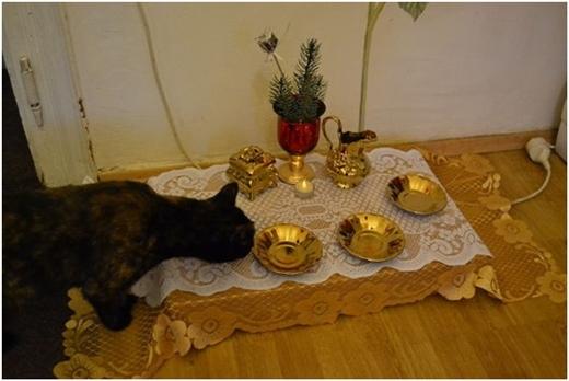 Bát đĩa vàng, khăn trải bàn Hoàng gia đấy nhé!