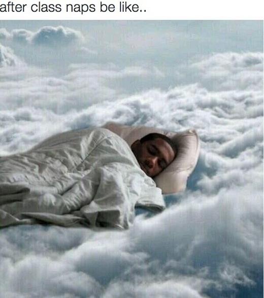 Một giấc ngủ ngắn giữa giờ như đưa bạn lên thiên đàng.