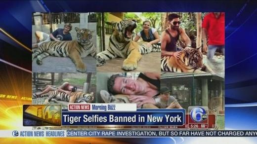Những nơi tuyệt đối cấm chụp ảnh tự sướng và dùng gậy selfie