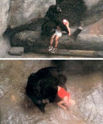 Tinh tinh cứu em bé 3 tuổi rơi xuống nước.
