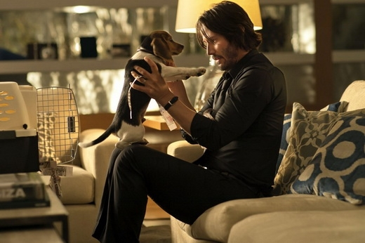 Keanu trong phim John Wick.