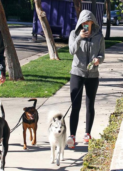 Miley Cyrus không có tâm trạng để chụp hình khi đang dắt chó đi dạo. Tuy nhiên giọng caWe Can't Stopsẵn sàng tăm tia một vài tấm hình để 'dằn mặt' các paparazzi.