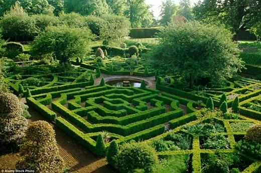 Mê cung Hatfield House, Hertfordshire trông như một khu vườn phép thuật.(Ảnh:Internet)
