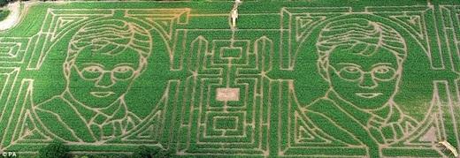 Mê cung Top Pearsy's Maize, York, Anh khổng lồ này là ý tưởng của một người nông dân muốn làm đẹp cho cánh đồng của mình.(Ảnh:Internet)