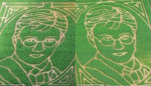 """Với đường kính 45m, tiêu tốn hơn 1 triệu cây bắp, mê cung có gương mặt của cậu bé phù thủy Harry Potternày được xem làmê cung từ cây bắp """"khủng"""" nhất châu Âu vào năm 2011. Được biết, người nông dân tài năng – chủ sở hữu nơi nàylà ông Tom Pearcy.(Ảnh:Internet)"""