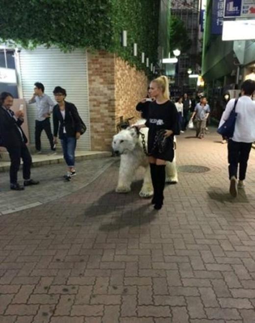 Năm 2014, một cô gái thời thượng xuất hiện cùng con vật nuôi cũng... thời thượng không kém, đó chính là chú gấu Bắc cực với bộ lông trắng muốt. Thiên hạ phấn khích ghi lại khoảnh khắc đặc biệt này, song cũng không kém người lên án hành động chơi trội của cô gái.