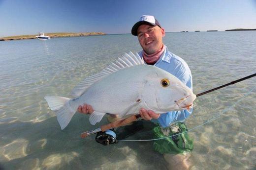 Được biết, loài cá này có chiều dài lên đến 1m khi trưởng thành. Trước đây, Blue Bastard bị nhầm lẫn bởi 1 giống cá khác tương tự. Nhưng sau đó, các nhà khoa học đã xác định nó là một loài riêng sau khi so sánh ADN của chúng. (Ảnh: Internet)