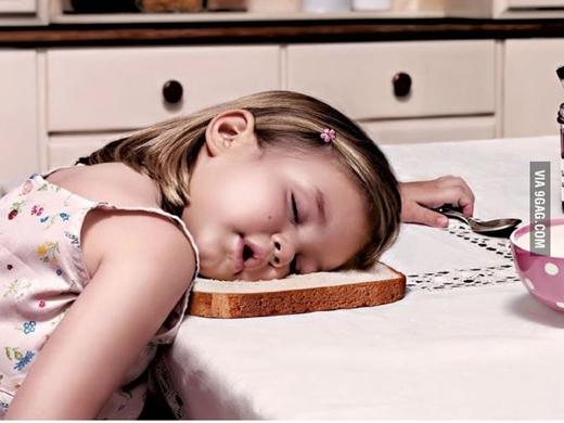 Bánh mì sandwich quả là một chiếc gối êm ái tuyệt vời. (Ảnh: Boredpanda)