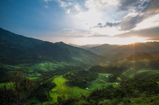 Ruộng lúa nằm giữa Hoàng Su Phì và Hà Giang.(Ảnh:Rehahn)