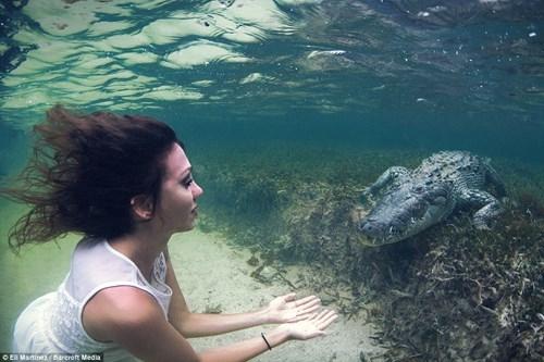 Thót tim với người mẫu trẻ chụp ảnh cùng cá sấu