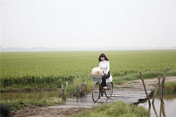 Vẻ đẹp của cánh đồng lúa xanh ngút ngàn, cây cầu gỗ ọp ẹp bắt ngang con sông nhỏ - vẻ đẹp của đồng quê Việt Nam khiến người ta không khỏi rung động. - Tin sao Viet - Tin tuc sao Viet - Scandal sao Viet - Tin tuc cua Sao - Tin cua Sao