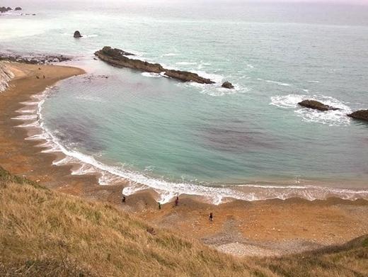 Nhìn từ xa, những chỏm sóng nhọn trông như cánh hoa khổng lồ.(Ảnh Boredpanda)