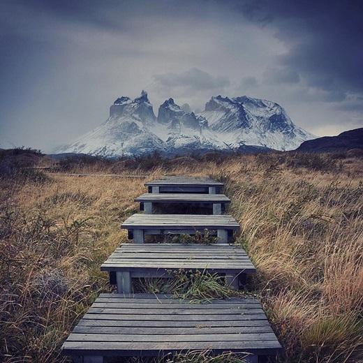 Những bậc thang gỗ trơ trọi giữa đồng hoang ởTorres del Paine, Chile. (Nguồn IG @almackinnon)