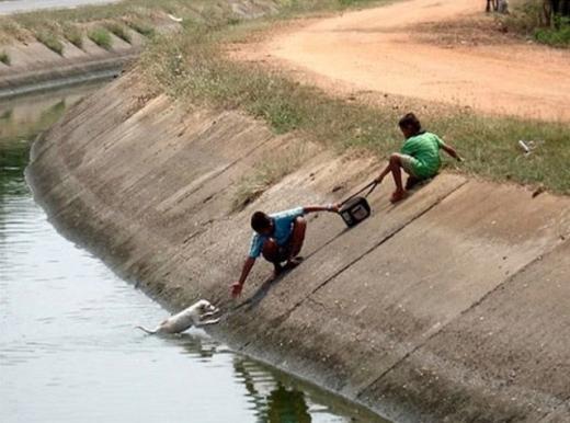 Hai cậu bé đang nỗ lực giải cứu chú chó mắc kẹt dưới mương nước. (Ảnh: Internet)
